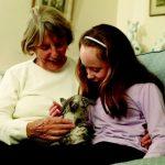 Children mystified by moggies…