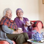 Two in five over 65s have only their TV or pet for company