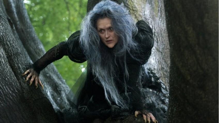 Meryl Streep tops this cast as an ugly hag!