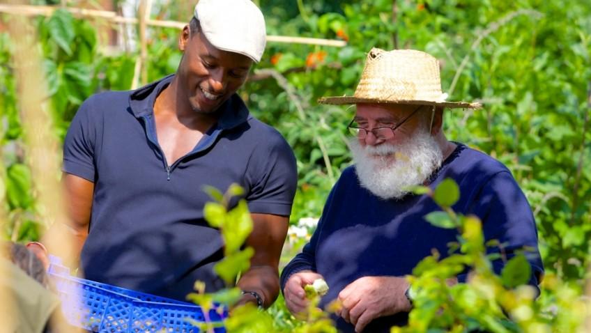 Gardening is the best 'prescription' for good health