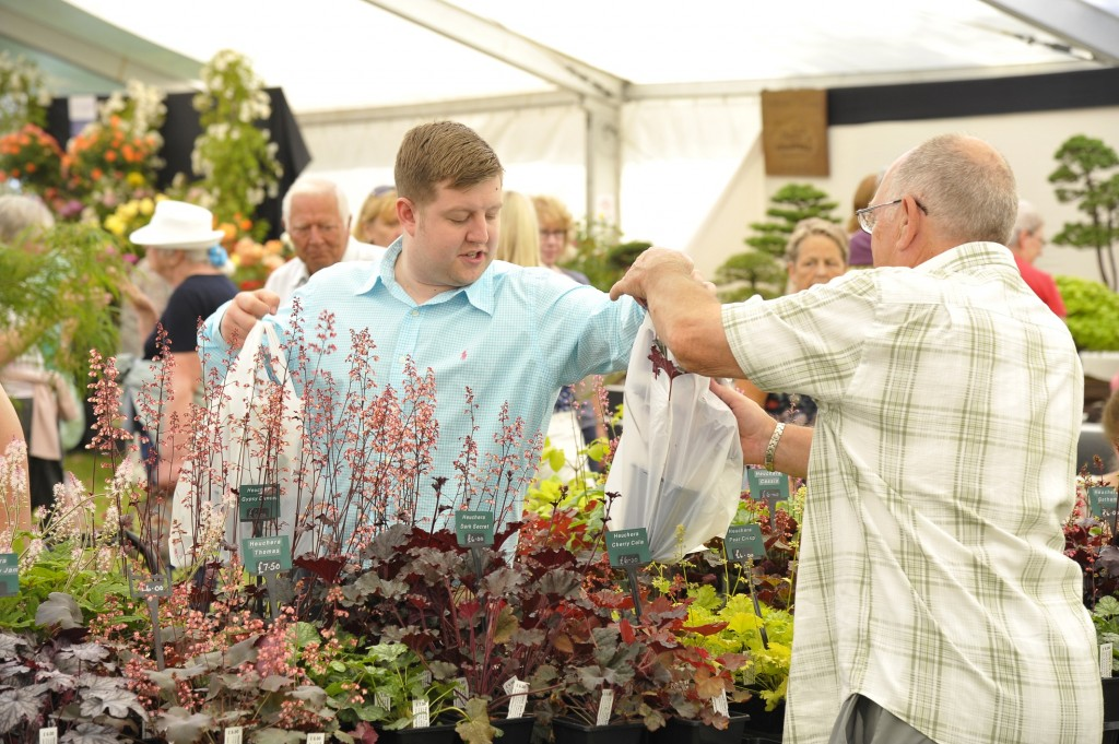 PRESS Purchasing plants at the Blenheim Palace Flower Show