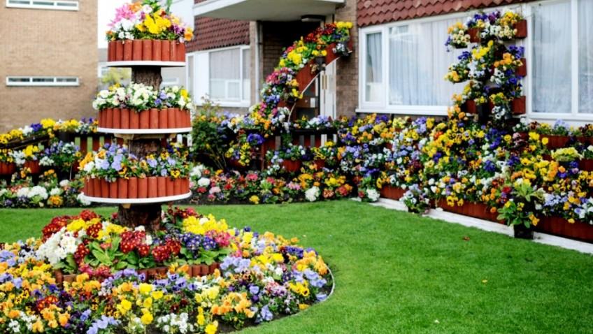 Garden flat