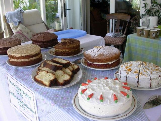 Red Cross open garden cakes