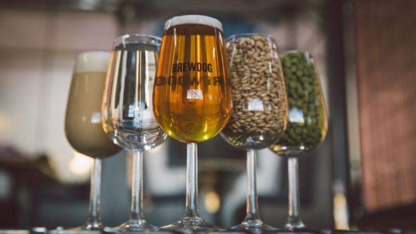 BrewDog: Craft beer for crafty investors