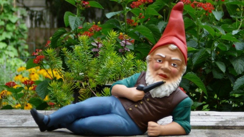 Research Reveals the latest gardening trends