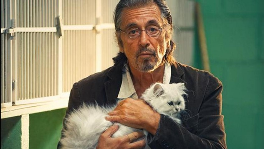 Al Pacino keeps trying, but not even Holly Hunter can redeem this disappointing film
