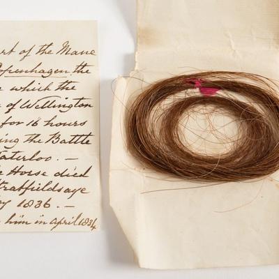 Lock of hair from the Duke of Wellington