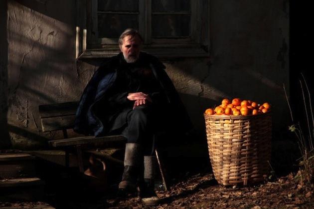 mandariner(1)