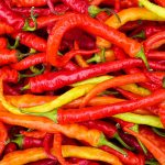 Chillies – Can you benefit from the heat?