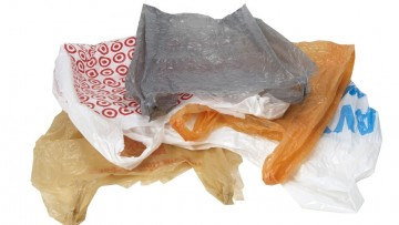 The plastic bag conundrum