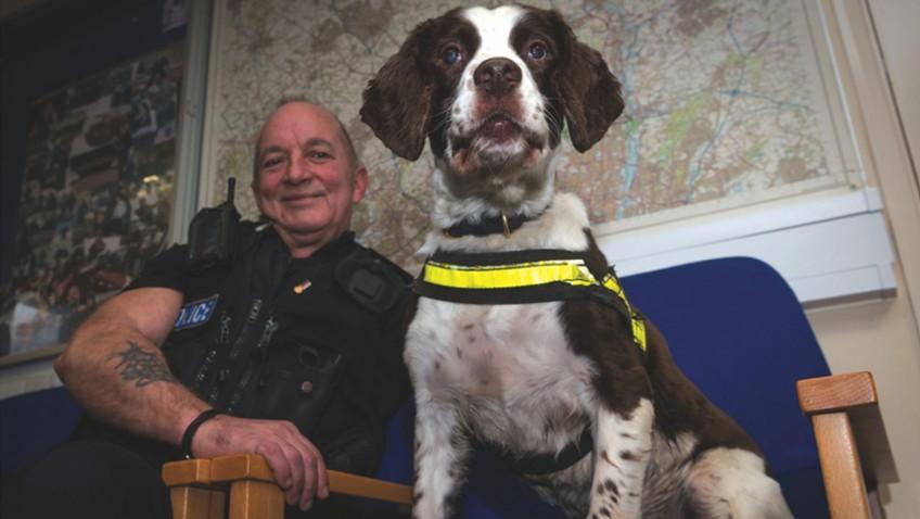 Doggy detective retires