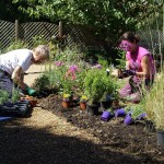 Transforming gardens to support people with dementia