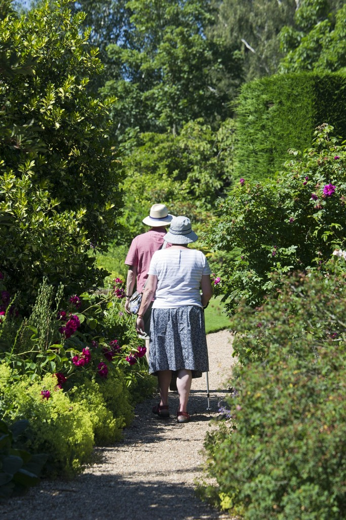 Elderly couple - Walking in gardens - Free for commercial use  No attribution required - Credit Pixabay
