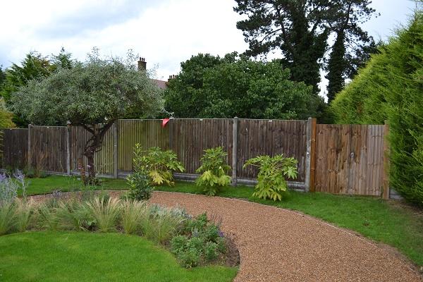 herne bay pear tree path