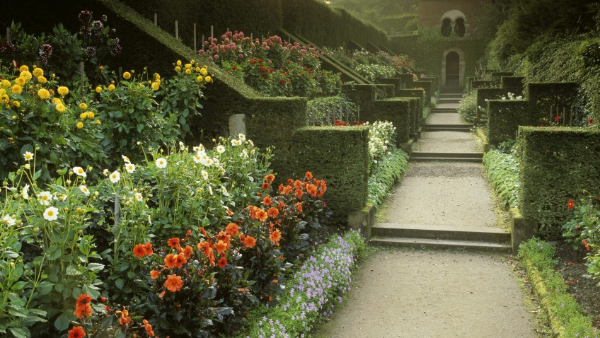 National Trust - Biddulph Dahlia walk - Copyright National Trust Images - Credit Andrew Butler