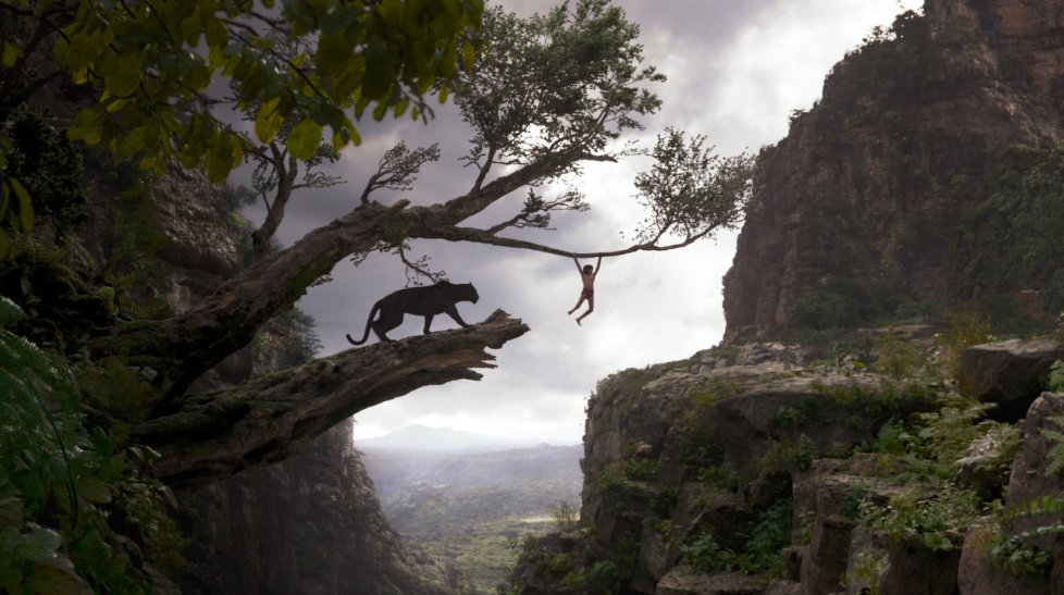 Mowgli swinging on tree with panther
