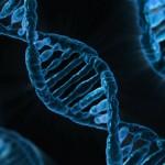 Elixir of life' set of genes 'could defeat Alzheimer's