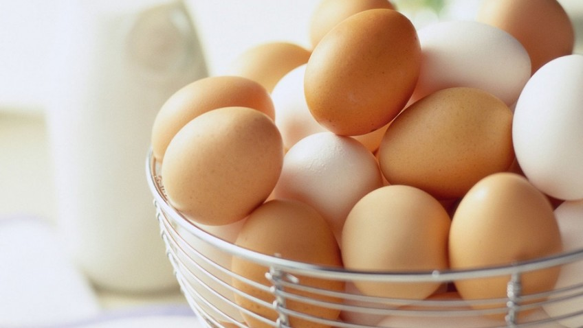 Eggs – the perfect protein, for any stage of life