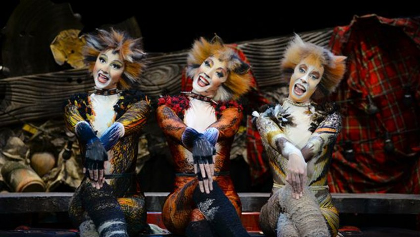 Eileen Caiger Gray reviews Cats at Leeds Grand Theatre