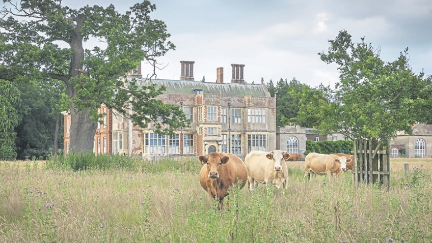Norfolk – regal estates and cruising the Broads