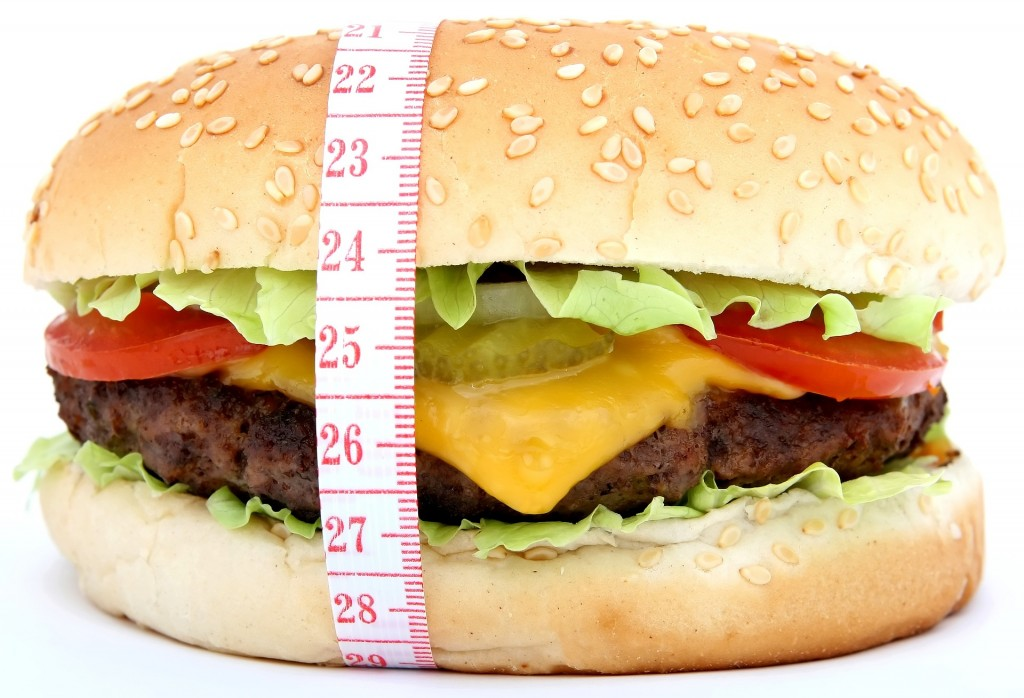 Fast food - Burger - Free for commercial use No attribution required - Credit Pixabay