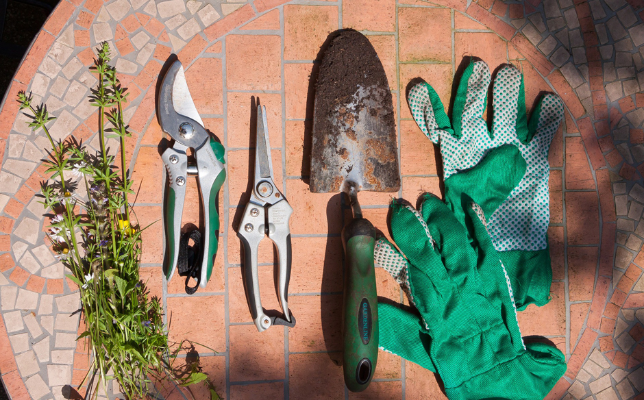 Gardening tools - Free for commercial use No attribution required - Credit Pixabay
