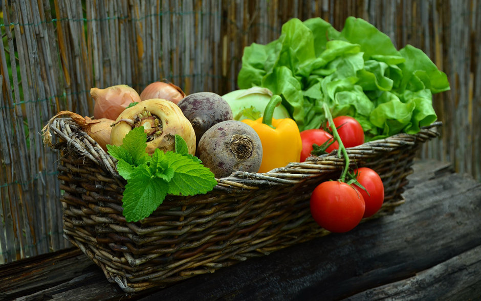 Vegetables - Harvest - Free for commercial use No attribution required - Credit Pixabay