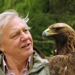 Sir David Attenborough revealed as the nation's favourite TV personality