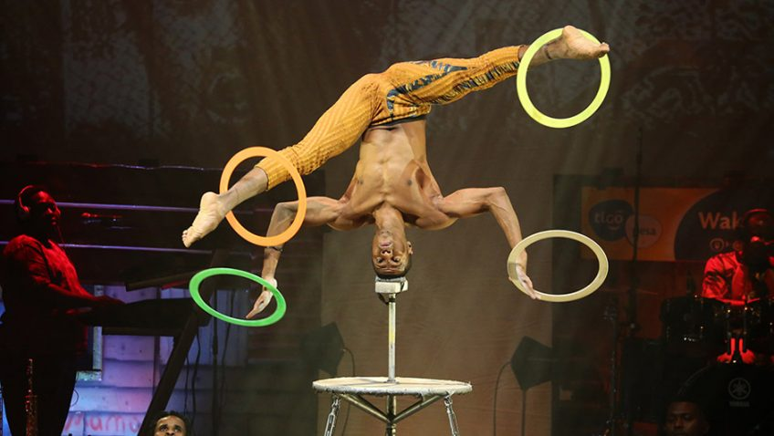 Amazing and precarious stunts from Mother Africa