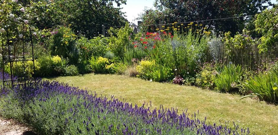 Nigels garden