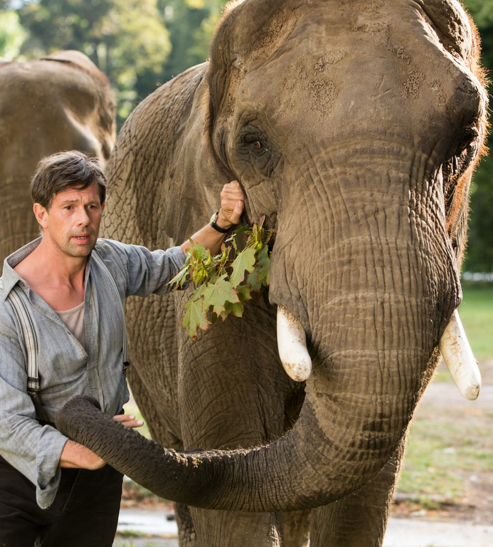 Johan Heldenbergh in The Zookeeper's Wife - Credit IMDB
