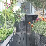 Gardening tips for balconies and patios