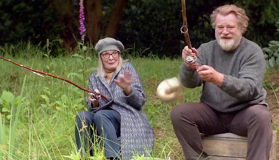 Diane Keaton and Brendan Gleeson in