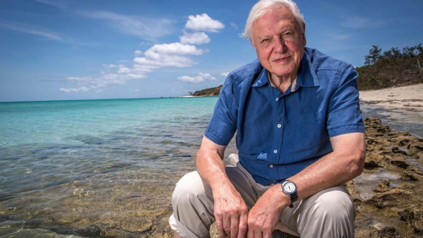 Sir David Attenborough: And now for something completely different