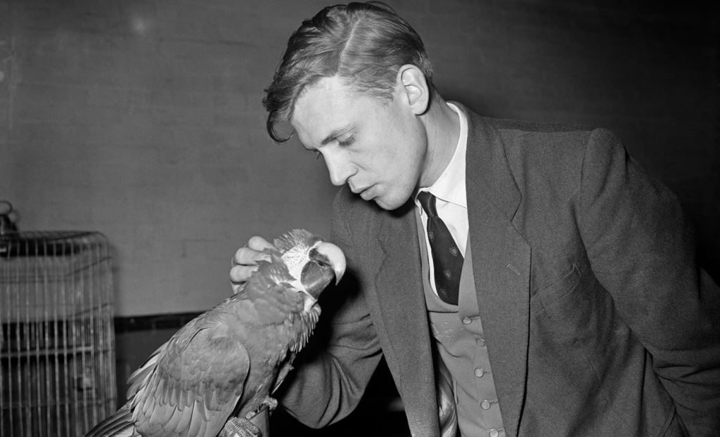 Young Sir David Attenborough