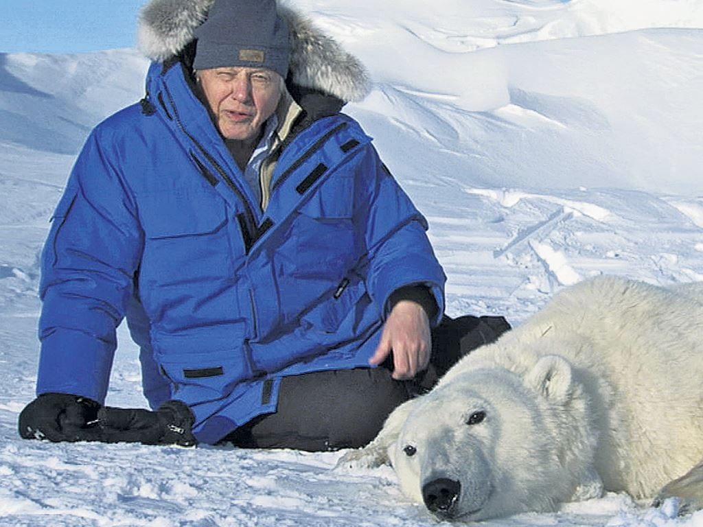 Sir David Attenborough with Polar bear