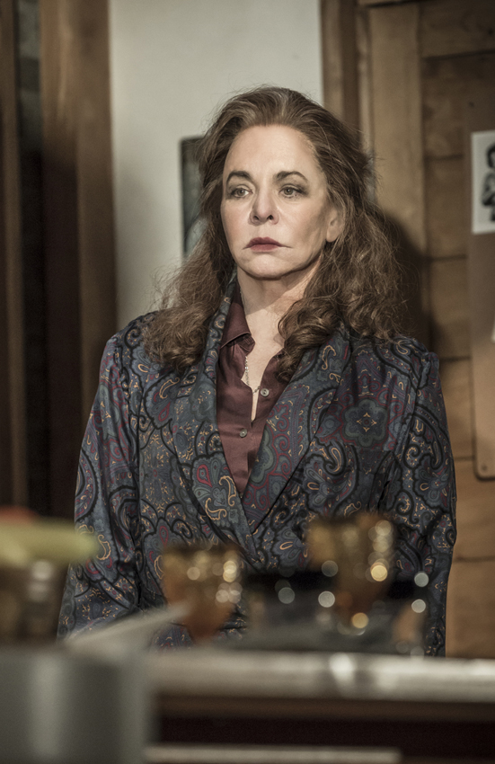 Stockard Channing in Apologia - Credit Marc Brenner