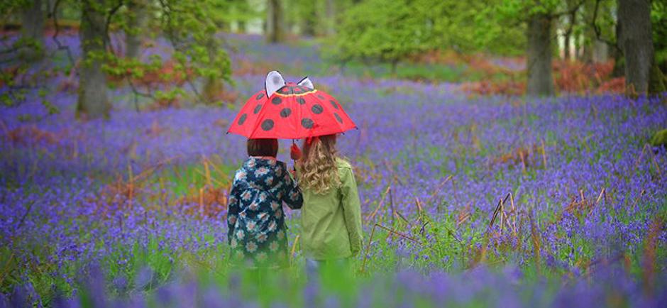 Children in Bluebells - Credit - Julie Howden/WTML