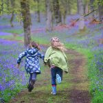 Spectacular bluebell wood near Kinclaven in Perthshire purchased by Woodland Trust Scotland
