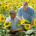 Wildlife Trusts partnership flying high