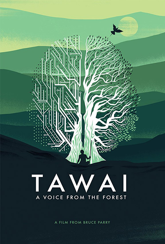 Tawai: A Voice from the Forest - Copyright Quest Unlimited Ltd - Credit IMDB