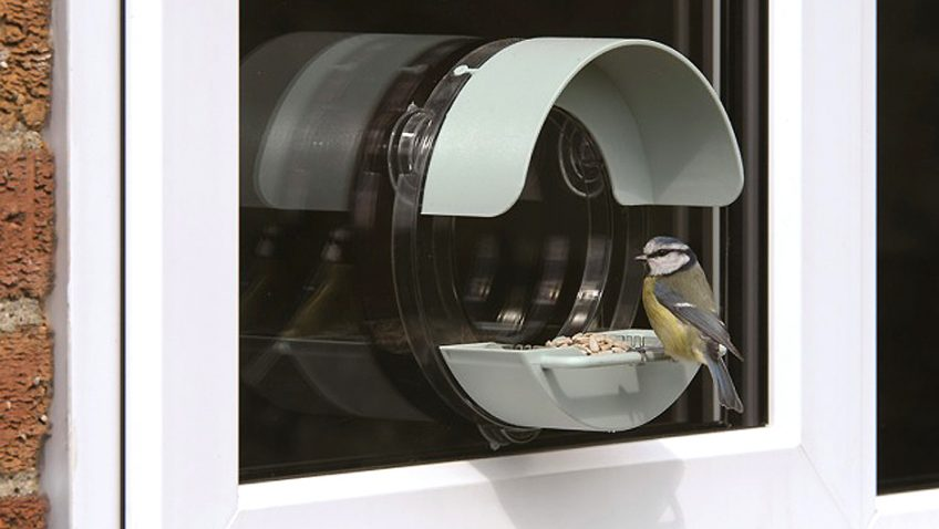 Win a RSPB Porthole Window Feeder with Buggy Nibbles!