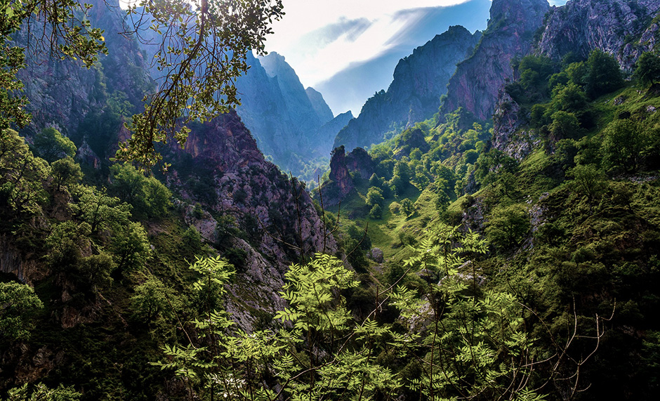 Picos de Europa - Asturias - Free for commercial use No attribution required - Credit Pixabay