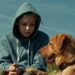 White God is the best film with 'dog' in the title since Amores Perros