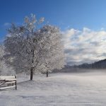 Senior Moment – Cold weather