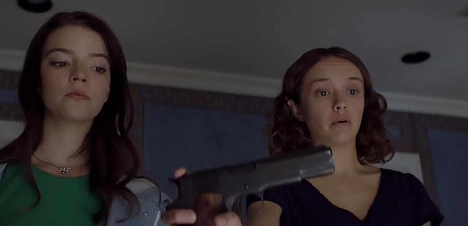 Olivia Cooke and Anya Taylor-Joy in Thoroughbreds - Credit IMDB