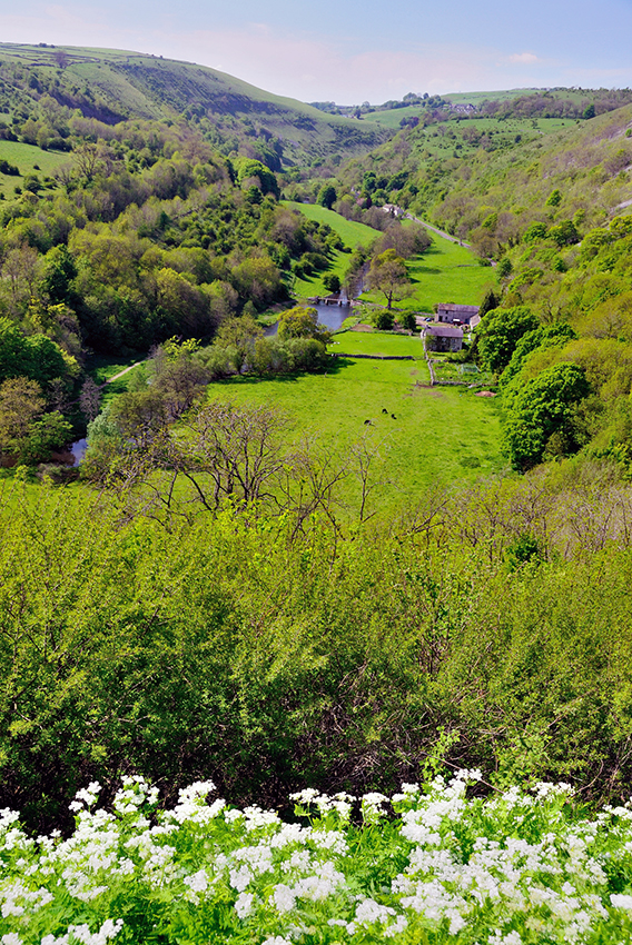 Deep Dale and Monsal Dale - Copyright Roger Butler