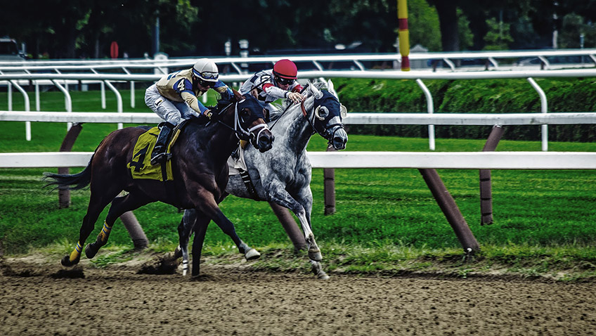 Horse racing event - Free for commercial use - No attribution required - Credit Pixabay