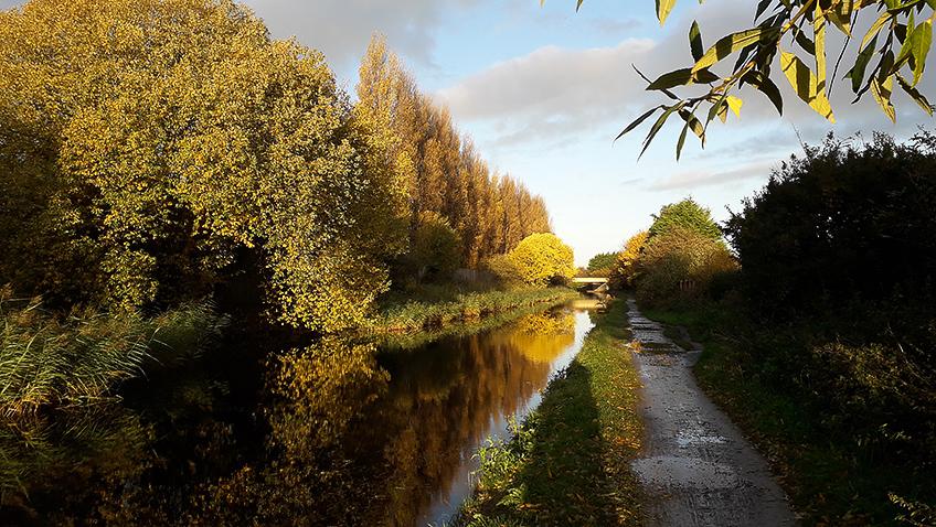 Aintree - Credit Nigel Heath