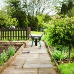 Can green fingers really boost your grey matter?